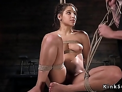 Sexy slave in lingerie secured up in ropes