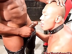 Black hunk screwing restrained asian jock