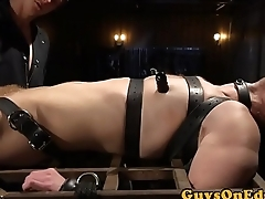 Bound gay gets dick sucked by BDSM dominant