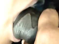 Desi wife sucking cock Close Up Shot  -www.freehdx.com