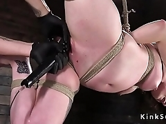Brunette in hogtie gets pussy vibrated